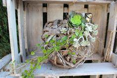 TD72 – Als Tischdeko oder zum aufhängen geeignet! Geflochtene Holzkugel, natürlich dekoriert mit künstlichen Sukkulenten, Silbernen Vogel und einer künstlichen Sukkulente in einer kleinen Edelstahlschale! Preis 29,90€ – Durchmesser ohne Deko 25cm