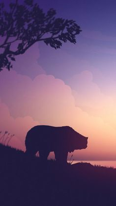 Grizzly Bear Minimal Sunset IPhone Wallpaper - IPhone Wallpapers