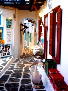 Yaşayan adaların kalbine gemi yolculuğu ile otantik deneyimler edinin. #greek #mykonos #greece #traveldeals #cruise #tatil #picturesque #alleys #cyclades