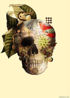 skulllife