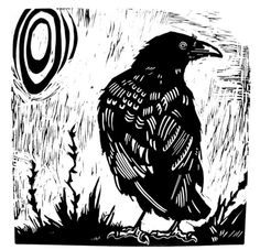 ARTFINDER: CROW by Laurel Macdonald - I'm drawing birds these days.  And crows have been cawing from the trees and telephone line.  They aren't as big as the ravens that perched in the tree north...
