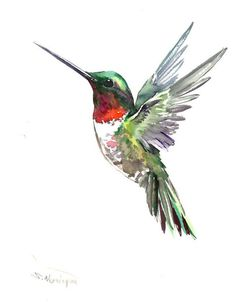 Ruby throated Hummingbird in Flight Art Hummingbird Drawing, Watercolor Hummingbird, Watercolor Bird, Hummingbird Symbolism, Origami Hummingbird, Watercolor Paintings Of Animals, Hummingbird Flowers, Bird Paintings, Watercolor Artists