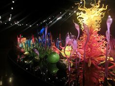 Seattle Chihuly Garden and Glass!  Cleeluc.com