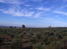 Sierra Morena, tierra de minas y aceite (Baños de la Encina, #Jaén)