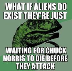 This sentence needs a comma after exist and a period at the end. Grammar win: What if aliens do exist, they're just waiting for Chuck Norris to die before they attack?