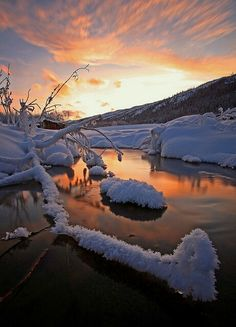 Winter Warmth, by Wolfhorn on Flickr Foun on coiour-my-world.tumblr.com