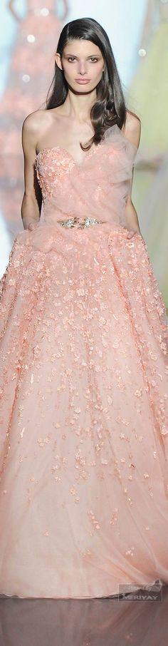Zuhair Murad.Spring 2015 Couture jaglady