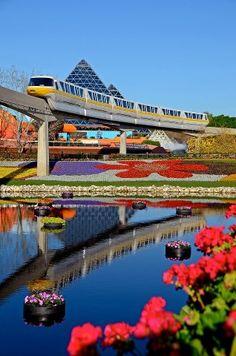 Walt Disney World - Epcot Monorail - Orlando, Florida Walt Disney World, Disney World Florida, Disney World Vacation, Disney World Resorts, Disney Vacations, Disney Trips, Disney Parks, Disney Worlds, Orlando Vacation