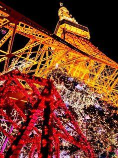 ☆TOKYO TOWER クリスマスイルミネーション2012☆