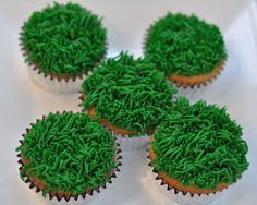 To make the grass: Hold tip #233 straight up over the cupcake. Starting very near the surface, squeeze. While squeezing, pull straight up. If you pull at an angle or to the side your grass will look weird.