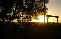 Nascer do sol na Ilha do Marajó - Pará - Brasil  Paisagem