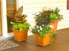 Container Garden Ideas For Front Porch