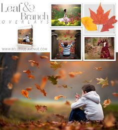 Bellevue Avenue | Leaf & Branch Overlays. 10 Falling Leaf Overlays +  80 Individual Leaves +  6 Single Branches that will help you create a blustery Fall day in your images. Quick and easy to apply in Photoshop, Creative Cloud and Lightroom (with OnOne's Perfect Layer Plugin) https://bellevue-avenue.com/collections/textures-and-overlays/products/leaf-overlays