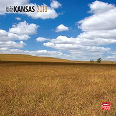 Wild & Scenic Kansas Wall Calendar: Fertile plains and amazing wind-carved rocks are only part of what make Kansas a beautiful state. Kansas has a subtle beauty enhanced by a slow pace of life. Life on the plains, even in extreme weather, offers a contemplative serenity that stays with folks from Kansas even when they leave.  http://www.calendars.com/Kansas/Wild-and-Scenic-Kansas-2013-Wall-Calendar/prod201300004854/?categoryId=cat00865=cat00865