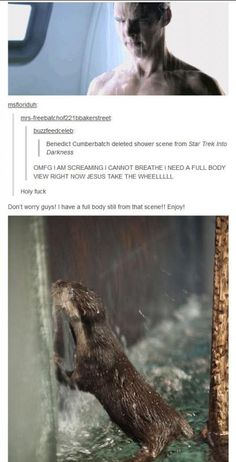 wet otter = wet Benedict xD (Star Trek: Into Darkness deleted shower scene) Sherlock Fandom, Sherlock Holmes, Sherlock Anime, Star Trek Into Darkness, Benedict Cumberbatch Sherlock, Star Wars, Fandoms, Johnlock, Martin Freeman