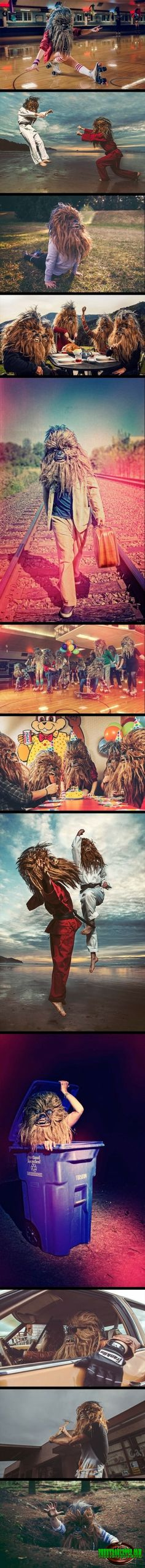 Hahaha, OMG look at this A day with chewbacca
