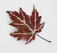 There are tons of inspiring DIY leaf crafts around the web, but many are for admiring, not actual making. Here are 10 that your kids will totally love! Easy Fall Crafts, Easy Crafts For Kids, Thanksgiving Crafts, Diy For Kids, Leaf Projects, Fall Art Projects, Diy Craft Projects, Autumn Leaves Craft, Fall Leaves