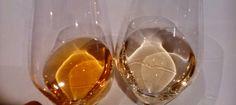 Cata de vino blanco semidulce   Solorioja.com Vinoteca Rioja. Gracias Vs Diamante