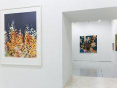 Henrik S Simonsen, Plantscapes, Solo show @ Galleri Christoffer Egelund, Copenhagen