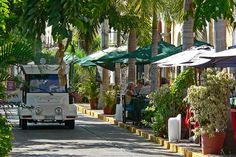 Pulmonia, Plaza Machado, Mazatlan