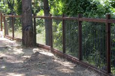 A rebar fence would be such a great solution. The dog wouldn't be able to use it as a ladder, it maintains the view, the rusted rebar would look incredible, and the rebar coming out of the top would be additional security against escape artists/unwanted visitors.