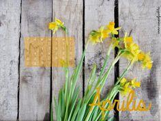 Ingyenesen letölthető áprilisi háttérképek Napkins, Towels, Dinner Napkins