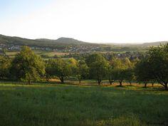 Blick vom Pretzfelder Keller 2012 mit Walberla