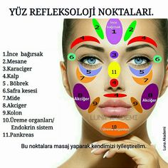 Facial reflexology is a non-invasive treatment is based on the theory that areas on your face are connected to areas of your body Reflexology Points, Acupressure Points, Gesicht Mapping, Prenatal Yoga Poses, Face Mapping, Acne Causes, The Face, Face Massage, Facial Care