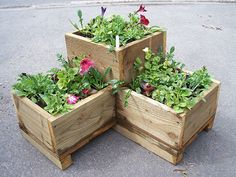 How to Plant Herbs in Planters