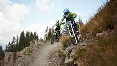 Hacklberg Trail Trail, Mountains, Nature, Vacation, Naturaleza, Nature Illustration, Off Grid, Bergen, Natural