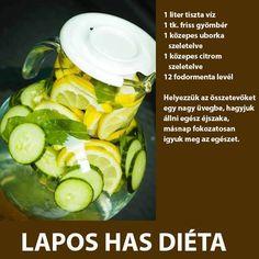 Lapos has diéta recepttel - MindenegybenBlog