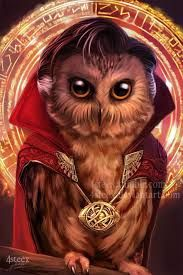 Image result for what owl looks like Dr. Strange
