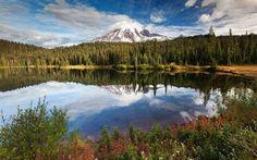 Scarica sfondi lago di montagna, gori, lago, alinci, montagne, paesaggio di montagna, albero