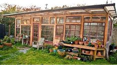 A greenhouse built from used windows. With a solar powered fan for air circulation and a gutter that directs rainwater into a 200-gallon barrel.