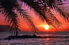 Sunset Beach, Haleiwa Hawaii