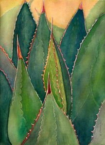 Watercolor painting of succulent plants, artwork by Debra Lee Baldwin Cactus Painting, Watercolor Cactus, Cactus Art, Watercolor And Ink, Watercolor Paintings, Painting Art, Watercolors, Watercolor Artists, Painting Lessons