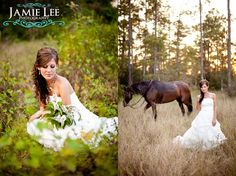 Bride with horse in field Florida