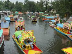 I have done this when I visited Mexico: xochimilco in mexico city -
