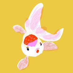 poisson (fish illustration) ᘠ Fun Illustration, Botanical Illustration, Illustration Fashion, Fashion Illustrations, Invisible Creature, Guache, Pics Art, Art Plastique, Art Direction