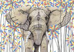 La naturaleza silvestre de las ilustraciones de  Sandra Dieckmann. Elefante