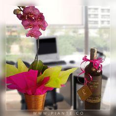 Se aproxima la temporada de fin de año y #Piante te trae fabulosos licores acompañados de las variedades más exóticas de #Orquídeas #Phalaepnosis. Pregúntanos por nuestros regalos corporativos. #RegalaVida #RegalaPiante - http://piante.co/ - #Flores #Premium #Decoración #IdeasDeRegalos #Colombia #OrquídeasDeColombia #ColombianOrchids #Regalos #Regaloscorporativos