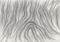 wood grain drawing - Google Search