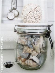 shells in jar