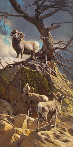 Dustin Van Wechel, The Mentor, oil, 48 x - Southwest Art Magazine Sheep Paintings, Wildlife Paintings, Wildlife Art, Animal Paintings, Horse Drawings, Animal Drawings, Hunting Art, Western Art, Pet Birds