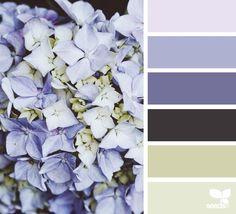 flora hues (design seeds)