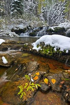Photo: Winter Waterfall Snow Scenery One look at this scenery picture shows a brisk change of season from fall one day, with autumn leaves and free flowing water, to winter the next day with fresh snow cloaking the landscape.