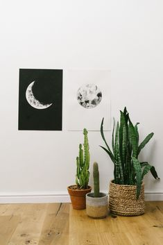 Shop online // Lunar Love shot by Love Made Visible Watercolor Moon, Moon Phases, Watercolours, Artwork, Artist, Shop, Home Decor, Work Of Art, Decoration Home