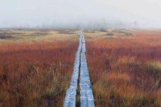 Patvinsuo on Suomen hienoimpia soita. Archipelago, Helsinki, Hiking Trails, Starters, Paths, Beautiful Places, National Parks, Landscapes, Photograph