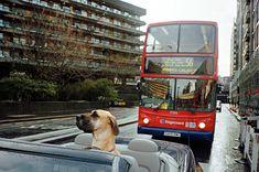 Aldersgate Street - Matt Stuart