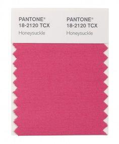 http://blog.presupueston.com/wp-content/uploads/2012/11/Rosa_Madreselva_Honeysuckle-PANTONE.jpg